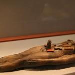 Особенности секса в Древнем Египте